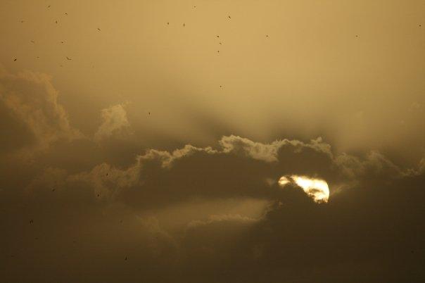 Sun Set - Digital Photography