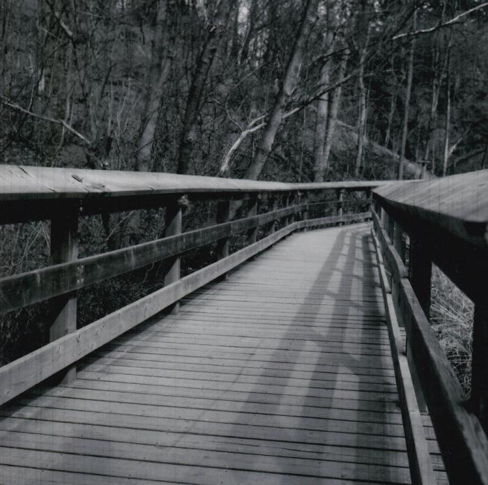 Wooden Bridge - B&W Medium Format Photography